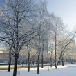 Winter in the city — Stock Photo