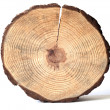 Wooden circle — Stock Photo #1590442