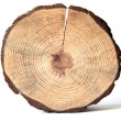 Wooden circle — Stock Photo