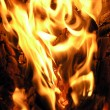 Fire — Stock Photo #1603338