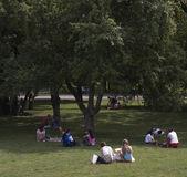 公園 — ストック写真