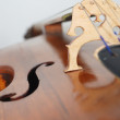 Stock Photo: Contrabass