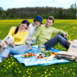 Friends with little white dog at picnic — Stock Photo