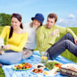 Friends with  white dog at picnic — Stock Photo