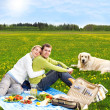 Stock Photo: Couple at picnic with golden retriever