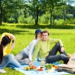 Friends at picnic making a photos — Stock Photo