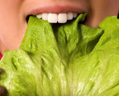 Close up girl is eating a salad leaf — Stock Photo