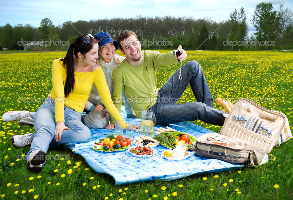 short essay on picnic with family