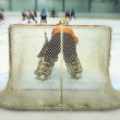 Stock Photo: View on back of ice-hockey goalkeeper