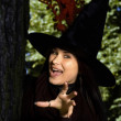 Stock Photo: Witch in hat