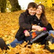 Stockfoto: Happy couple outdoors