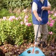 Man raking garden - Stockfoto