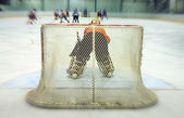 View on the back of the ice-hockey goalkeeper — Stock Photo