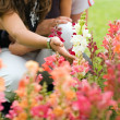 Couple in the garden (Hand in focus) — Stock Photo
