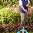 Man raking garden — Stock Photo #1711761