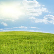 Green hill under blue cloudy sky - Stock Photo