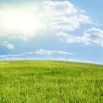 groene heuvel onder blauw bewolkte hemel — Stockfoto