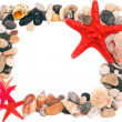 Seashells on sand picture frame - Stock Photo