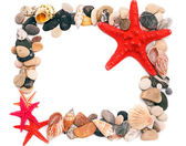 Seashells on sand picture frame — Stock Photo