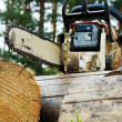 Chainsaw on wood cuttings (Shallow DOF) - Stock Photo