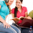 Friends are doing homework - Stock Photo
