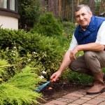 Man raking garden — Stock Photo