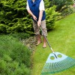 Man raking garden - Foto de Stock