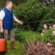 Florist working in the garden - Stock Photo