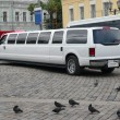 White Wedding limousine — Stock Photo