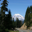 Mount Rainier Washington state — Stock Photo