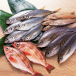 Fresh fish for health life — Stock Photo