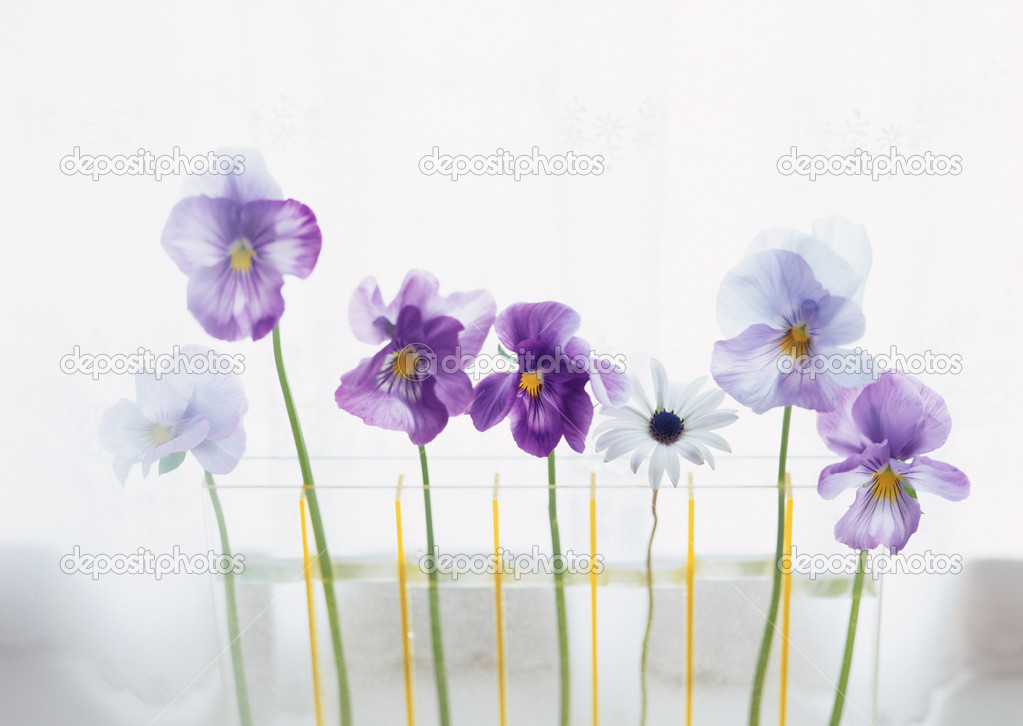 Life style with flowers — Stock Photo #1635810