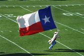 Texas Flag — Stock Photo