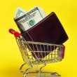 Stock Photo: Shopping for money