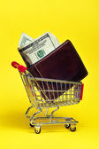 Shopping for money — Stock Photo