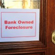 Stock Photo: Bank Owned Foreclosure