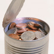 Stock Photo: Money in Can.