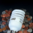 Fluorescent light bulb and money. — Foto Stock