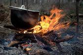 şenlik ateşi — Stok fotoğraf