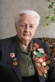 The veteran — Stock Photo