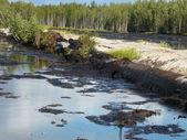 Inondazione di olio — Foto Stock