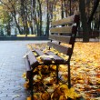 Empty bench in a autumn park — Stock Photo