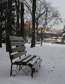 Empty bench in a winter park — Stock Photo