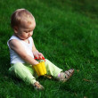 Little boy on a green grass — Stock Photo