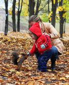 Little boy feeds a squirrel — Stock Photo