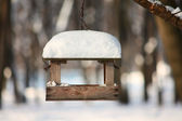 Feeder for a birds — Stock Photo