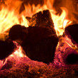 Royalty-Free Stock Photo: Fire burning in the furnace