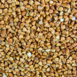 Buckwheat groats — Stock Photo #1598193