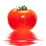 Tomato isolated — Stock Photo