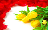 Holiday floral background — Stock Photo